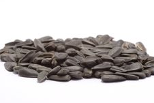 Free Black Raw Sunflower Seeds Royalty Free Stock Photo - 1984545