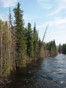 One Of Siberian River Stock Photos
