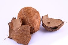 Free Coconut Royalty Free Stock Photo - 1986945