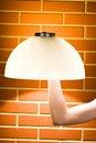 Free Hand Lamp Royalty Free Stock Photo - 19804345