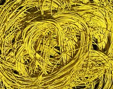 Free Yellow Wire Stock Photography - 19800102