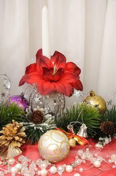 Free Christmas Arrangement Stock Image - 19804111