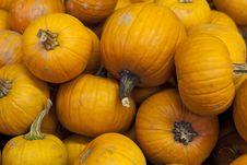 Free Pile Of Pumpkins Royalty Free Stock Photos - 19805178