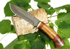 Free The Hunting Knife Stock Images - 19806684
