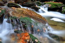 Free Autumn Creek In Bohemia Stock Image - 19808241