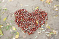 Free Chestnut Heart On The Sand Royalty Free Stock Photo - 19813065