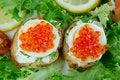 Free Caviar Sandwiches Royalty Free Stock Photo - 19814445