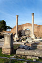 Free Roman Forum Royalty Free Stock Photography - 19814897