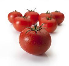 Free Ripe Tomatoes Stock Photo - 19811660