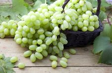 Free White Grapes In Wicker Basket Stock Photos - 19812073