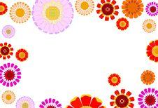 Free Daisy Background Stock Image - 19812191