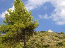 Free Croatia: Elafiti Islands Royalty Free Stock Photography - 19812687