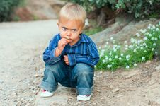Free Boy In The Garden Royalty Free Stock Images - 19815289