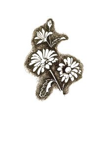 Free Ink Drawing Of Daisies Stock Images - 19816204