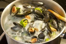 Free Mussels Stock Image - 19818971