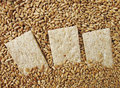Free Small Loaf (of Bread) Stock Image - 19829411