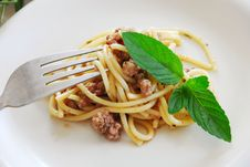 Free Spaghetti With Minced Meat Royalty Free Stock Images - 19824009