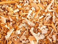 Free Background Of The Golden Curls Of Wood Shavings Stock Image - 19825311