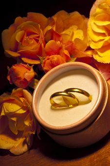 Roses And Wedding Rings Stock Images