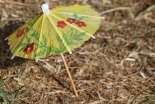 Free Yellow Small Umbrella Standing On The Grass Stock Images - 19828124