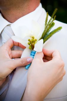 Boutonniere Stock Images