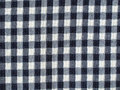 Free Blue Checkered Fabric Royalty Free Stock Images - 19837769