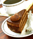 Free Chocolate Cake On Plate Royalty Free Stock Image - 19838786