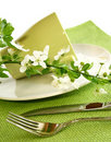 Free Plate, Fork, Knife And Spring Branch Stock Image - 19838991