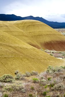 Free Yellow Color Of Painted Hills. Stock Image - 19831341