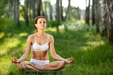 Free Practicing Of Yoga Outdoors. Royalty Free Stock Image - 19832556