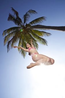 Free Pretty Teenager Smiling And Jumping Under A Palm Royalty Free Stock Images - 19833839