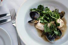 Free White Fish With Watercress And Clams Royalty Free Stock Photography - 19834117