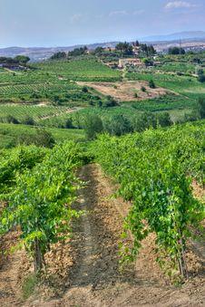 Free Hills Of Tuscany Stock Photo - 19834900