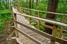 Free Footbridge And Trees Stock Photos - 19835193