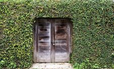 Ancient Wood Door With Grass On Wall Stock Photo