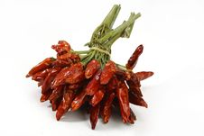 Free Bunch Of Dried Chili Peppers Royalty Free Stock Image - 19836496