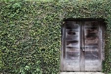 Free Ancient Wood Door With Grass On Wall Royalty Free Stock Images - 19836519