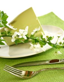 Plate, Fork, Knife And Spring Branch Stock Image