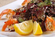 Free Shrimp Salad 3 Stock Photo - 19839010