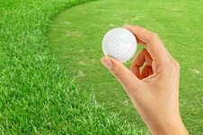Free Green Of  Golf Course Stock Photos - 19839323