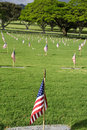 Free National Cemetery Stock Photos - 19844073