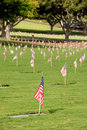 Free National Cemetery Royalty Free Stock Photo - 19844095