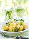 Free Potato Salad Royalty Free Stock Images - 19849639