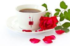 Free Rose Tea Stock Photos - 19840343