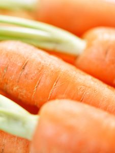 Free Bunch Of Crunchy Carrots Close-up Royalty Free Stock Images - 19841609