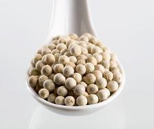 White Peppercorns Stock Photo