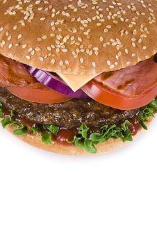 Free Hamburger Royalty Free Stock Photo - 19842445