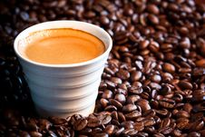 Free Coffee Beans Royalty Free Stock Images - 19843709