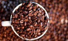 Free Coffee Beans Stock Images - 19843854