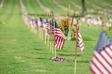 Free National Cemetery Stock Images - 19843944